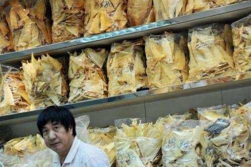A man in a shark fin store in Hong Kong on November 22, 2011