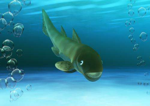 A new species of marine fish from 408 million years ago discovered in Teruel