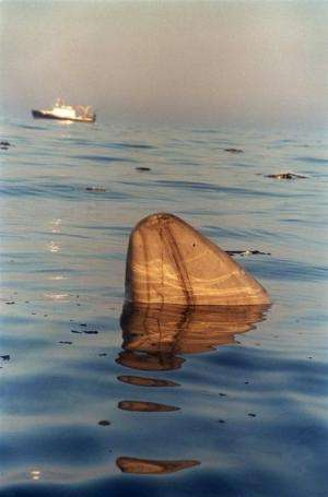 A piece of TWA flight 800 floats in the waters of the Atlantic Ocean July 18, 1996 off the coast of Long Island New York