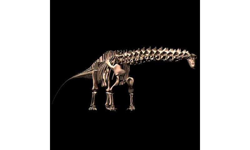 A sauropod walks into a bar. 'Why the long neck?'