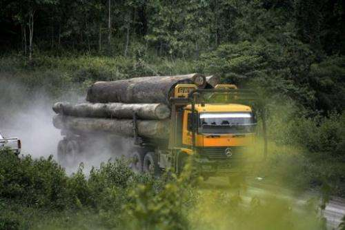 A truck carries away timber in the upper Baram region of Malaysia's eastern Sarawak state on July 22, 2010