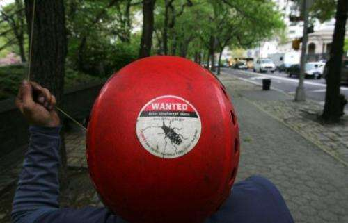 "A US Dept of Agriculture employee, wears a ""Wanted: Asian Longhorned Beetle"" sticker on May 2, 2005 in New York City"