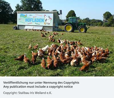 Automated Comfort for Free-Range Hens