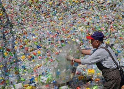 A volunteer sorts through plastic bottles at a recycling plant in Taipei on February 28, 2013