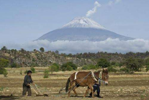 Backdropped by Popocatepetl Volcano a farmer plows the land in the state of Puebla, on May 14, 2013