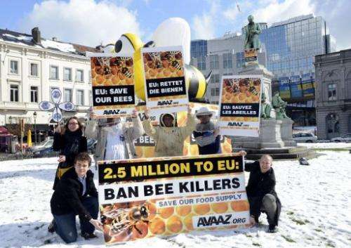 Bee keepers demonstrate to demand that lawmakers ban the use of bee-killing pesticides in Brussels, on March 14, 2013