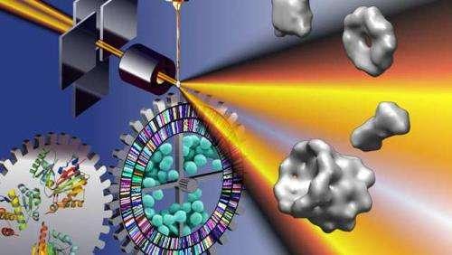 Bold move forward in molecular analyses