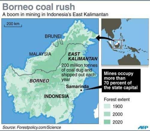 Borneo coal rush