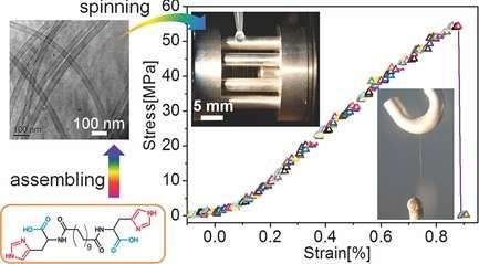 Chemistry team creates spontaneously forming supramolecular nanotube yarn