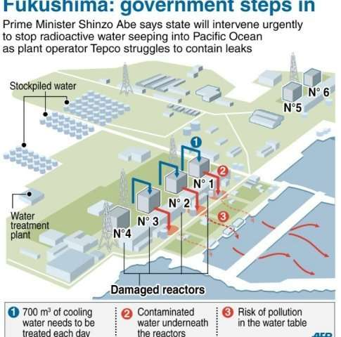 Danger of contaminated water leaking into the ocean at stricken Fukushima nuclear plant