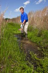 Drainage ditches can help clean up field runoff