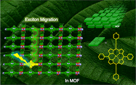 Enhanced light-harvesting in quantum dot: Metal-organic frameworks