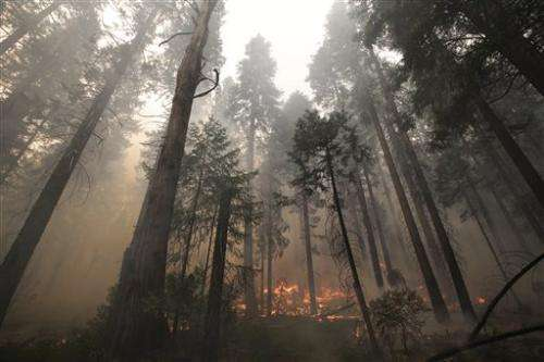 Explosive western US wildfire 20 percent contained