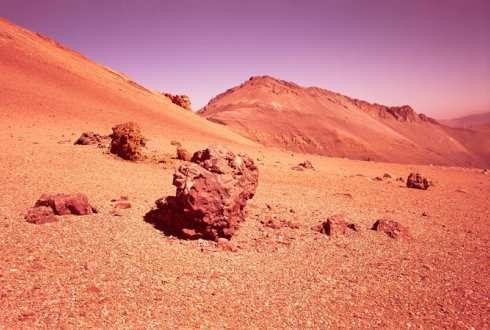 Growing plants on Mars