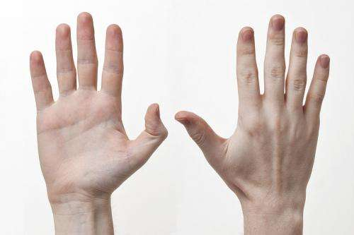 [Image: hand.jpg]