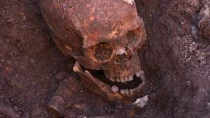 The Search for Richard III wins prestigious award