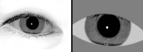 Iris Images