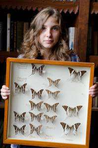 Local school pupil unearths priceless butterfly specimens