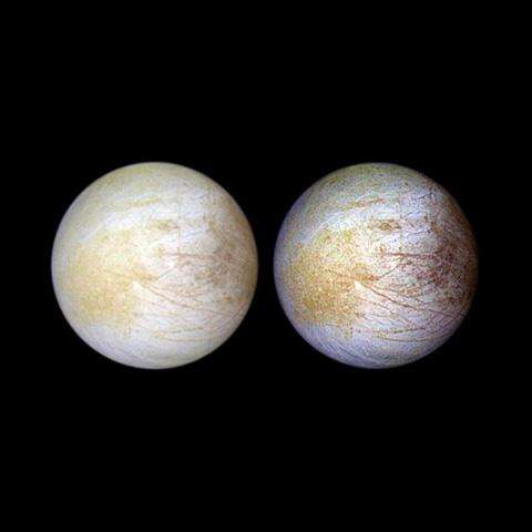 Mapping the chemistry needed for life at Europa
