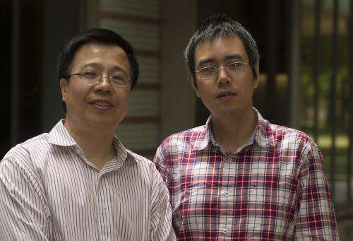 Material turns 'schizophrenic' on way to superconductivity