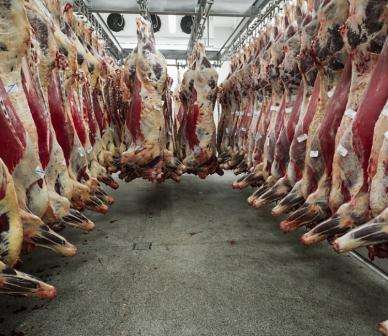 Meatworkers prone to violence, expert says