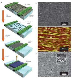 Densest array of carbon nanotubes paves way toward post-silicon technology