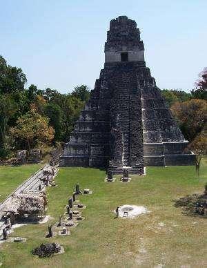 Newly revealed Maya farming hotspots hold key to ancient culture