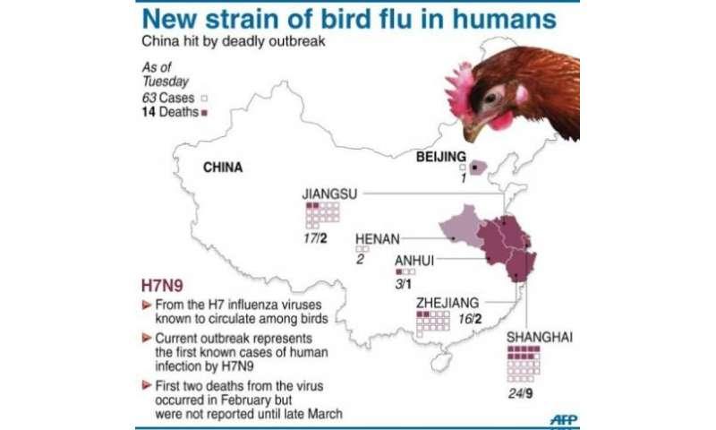 New strain of bird flu in humans