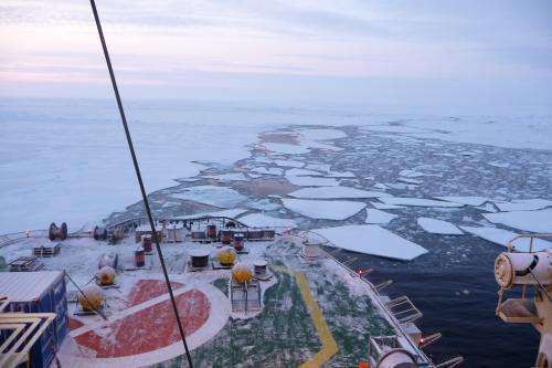 Pioneering study calculates Arctic Ocean nutrient budget