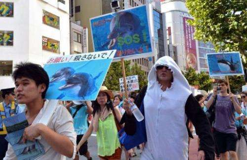 Protestors rally against the start of Japan's annual dolphin hunt in Tokyo on August 31, 2013