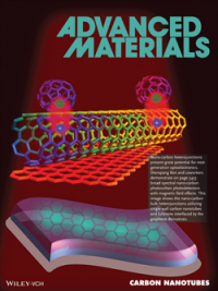 Research boosts understanding of nano-carbon in photodetectors