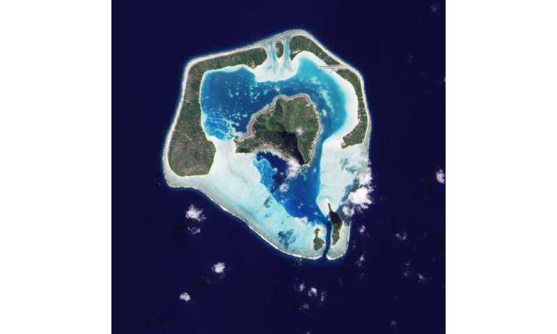 Revising Darwin's sinking-island theory