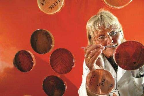Scientists raise alarm over today's measures against Legionellosis