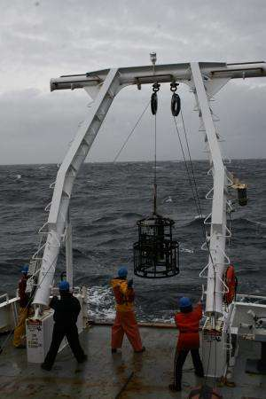 Scientists use marine robots to detect endangered whales