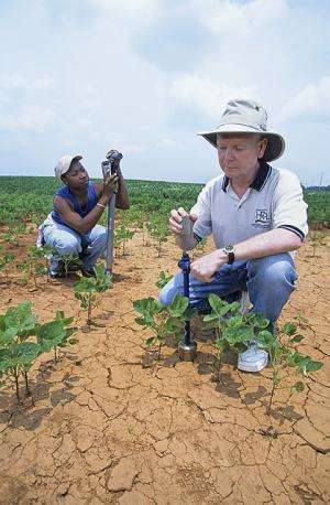 Scientists verify soil moisture data collected by satellites