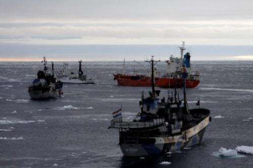 Ships from the environmental group Sea Shepherd surround a supply vessel (back R), on February 20, 2013