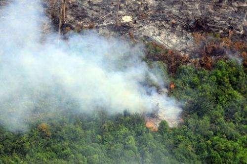 Smoke from fires in Pelalawan regency in Riau province on Indonesia's Sumatra island on June 21, 2013