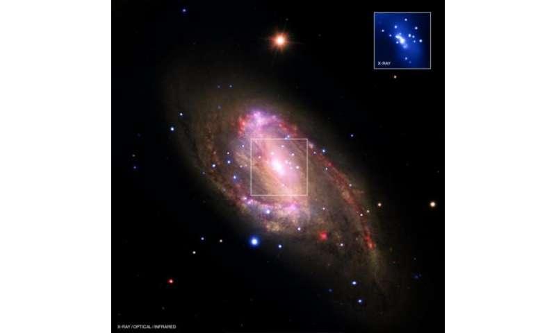Spiral Galaxy NGC 3627