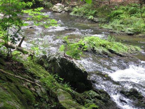 Streams stressed by pharmaceutical pollution