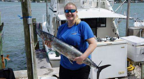 Studying the Noble King Mackerel