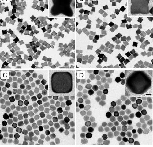 Surface diffusion plays a key role in defining the shapes of catalytic nanoparticles