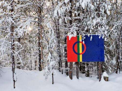 The Sami flag next to snow covered trees at the Kallak prospecting area near Randijaur village, 40 km north-west of Jokkmokk, in