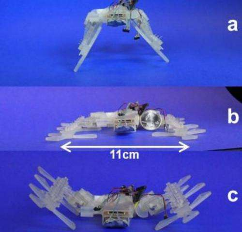 3D printer-built robot has insect moves