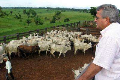 UCSB anthropologist studies cattle ranchers in Brazilian Amazon
