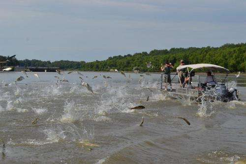 Underwater CO2 shows potential as barrier to Asian carp
