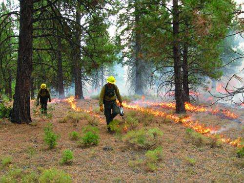 Using fire to manage fire-prone regions around the world