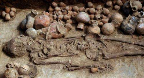 View of one of two skeletons found in a burial chamber near the city of Trujillo, Peru, on August 3, 2013.