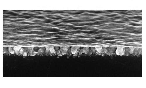 Water glides freely across 'nanodrapes' made from the world's thinnest material