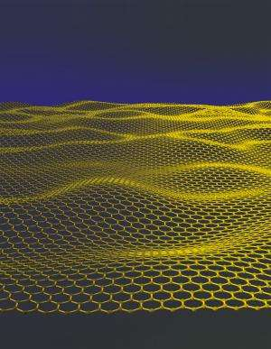 What can a graphene sandwich reveal about proteins?