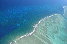 Wind 'fights' Leeuwin to provide nutrient rich waters